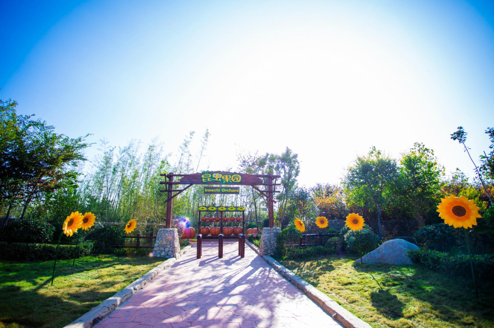 龙寺生态园十大景点